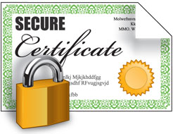 SSL Certificate for Tour and Activity websites