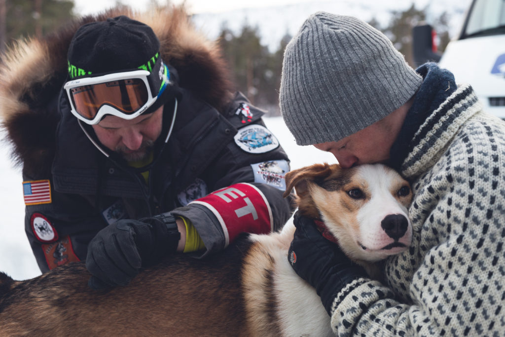 Tove's son, Torkil Hansen, comforts his sled dog during the gruelling Finnmarksslopet, the world's northernmost sled dog race.