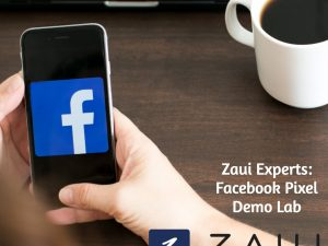 Zaui Experts: Facebook Pixel Demo Lab