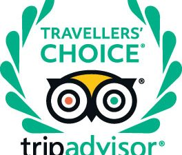 Why You Need to Leverage TripAdvisor